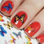 Яркие бабочки на красном лаке